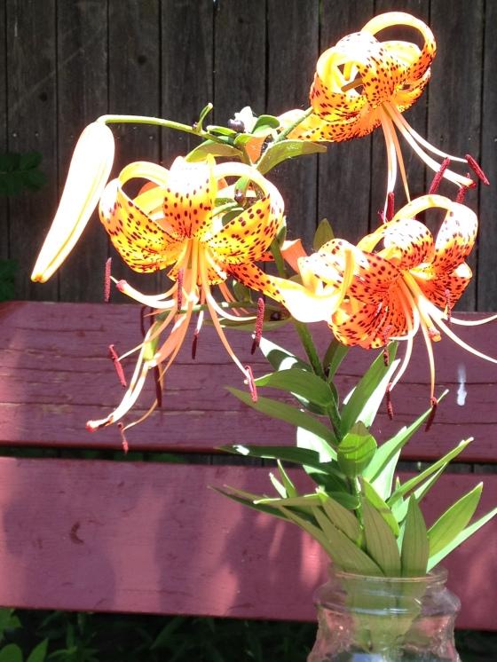 Three Tiger Lilies